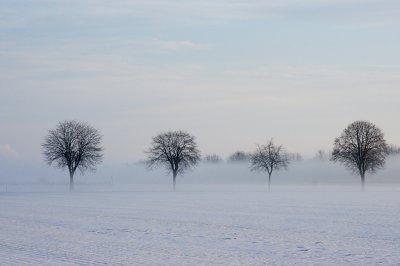 Winter 006 A7_28135.jpg