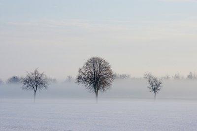 Winter 007 A7_28135.jpg