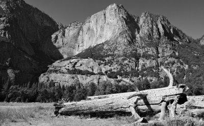SIGMA DP1 Merrill • 19mm • f11 • ISO100 • Yosemite.jpg
