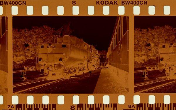 2020-05-010_KODAK_BW400-CN_DSC0445.jpg