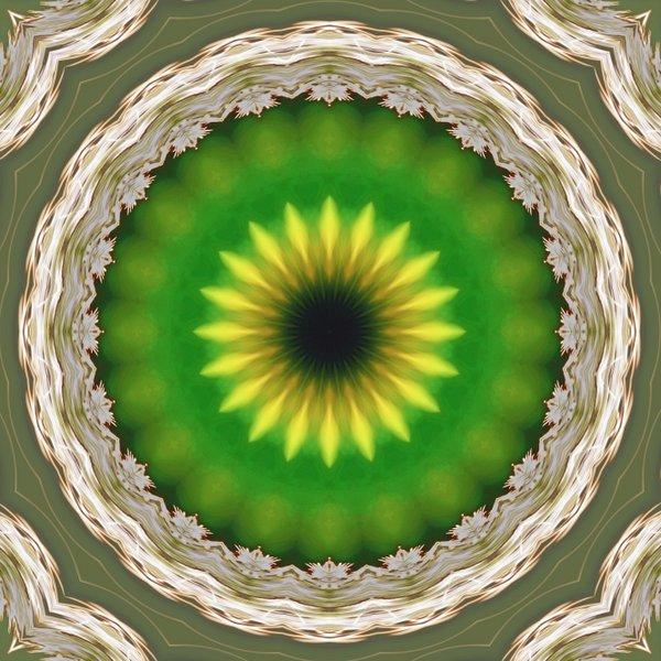 SonnenmandalsausKugelpflanzenSL290280FINVAR_666x666.jpg